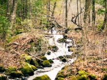 Ruisseau bordant la zone parc